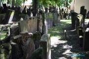 <h5>Prague, vieux cimetiere juif</h5>