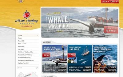 Husavik whale watchning